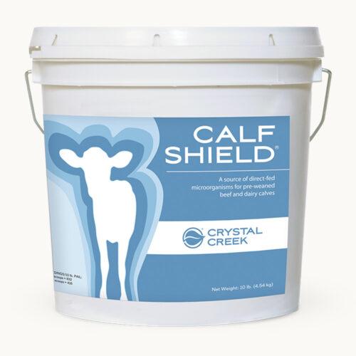 Pail of Calf Shield