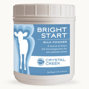 Bright Start Bulk Powder