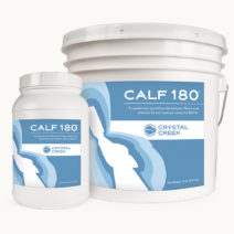 Jar and pail of Calf 180