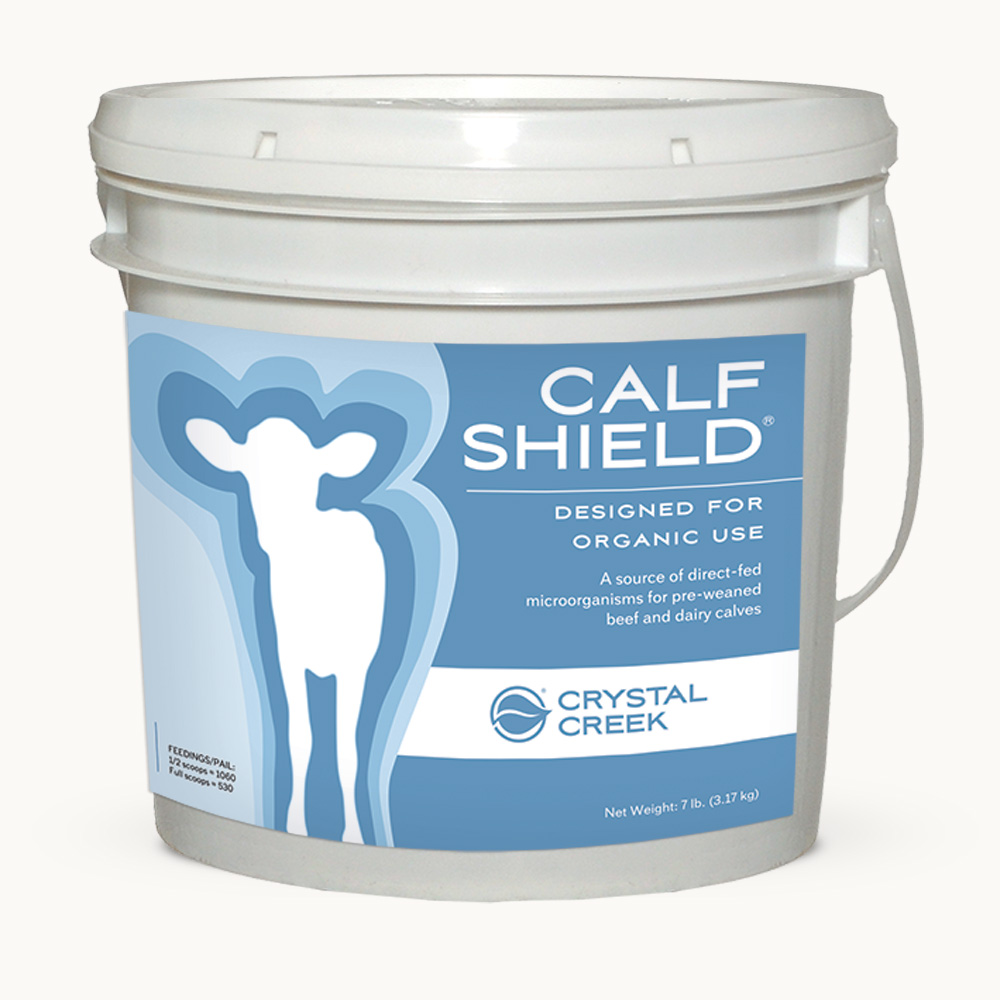 Pail of Calf Shield
