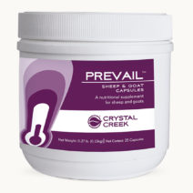 Prevail™