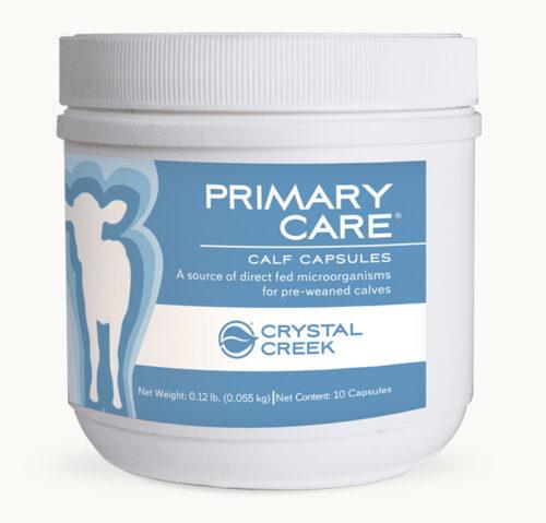 Primary Care