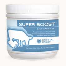 Super Boost™ Calf Capsules