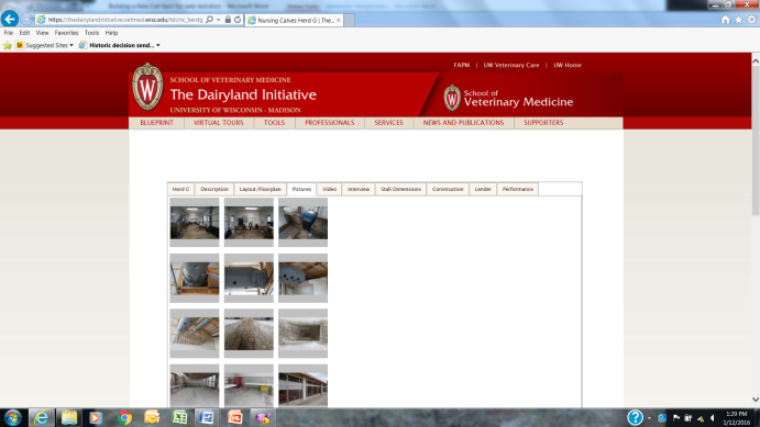The Dairyland Initiative website