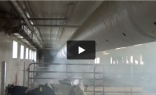 Fogging Calf Barn