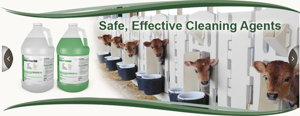 Safe, Effective Cleaning Agents