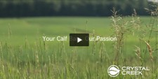 Your Calf Barn, Our Passion