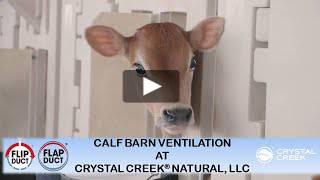 CALF BARN Air Circulation at Crystal Creek