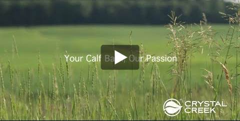 Your Calf Barn Our Passion